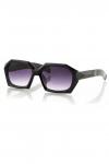 Polo55 Kadın Güneş Gözlüğü PL19M56R001